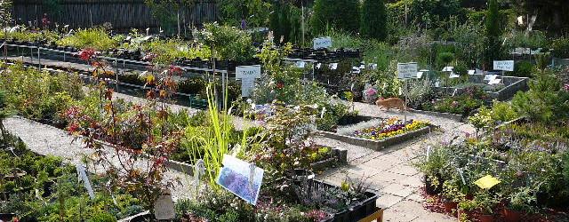 vejtasa -zahradnictvi